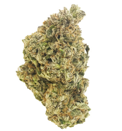 (5 STAR) Lucid Blue – Sativa