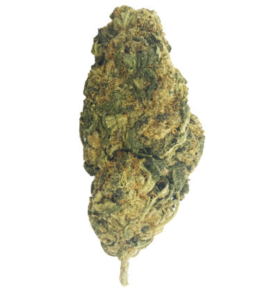 (AAA+) Mango Breath – Sativa